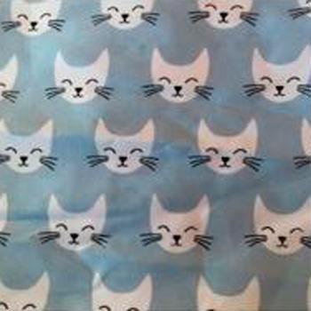 Gato Azul - 57